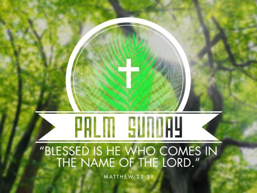 Palm Sunday 2013